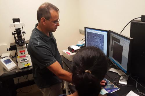 Data acquisition in the Jacobs-Wagner lab.