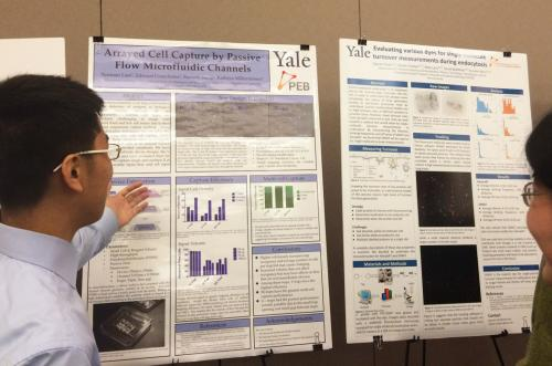 2015 meeting: First-year physics student presenting a poster on the Integrated Workshop module conduced in the Miller-Jensen lab.
