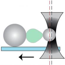 Nuclear stretch schematic