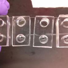 Microfluidic device